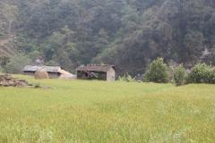 nepal-72