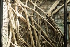 Anping Tree House, Tainan