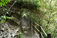 Wandelpad naar Maolin Waterval